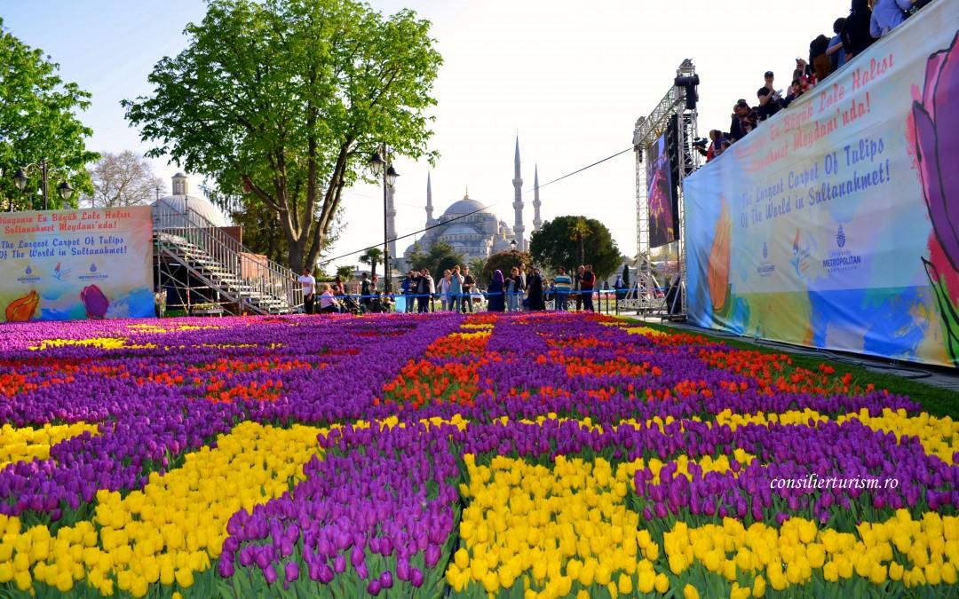 Festivalul Lalelelor Istanbul: orașul de pe Bosfor, sub imperiul florilor cu turban