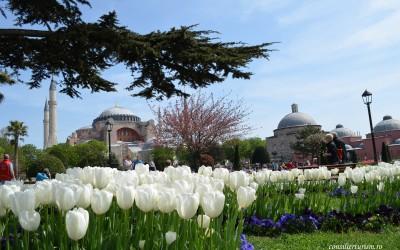 Weekend la Istanbul: ce obiective merită să vezi și ce să faci