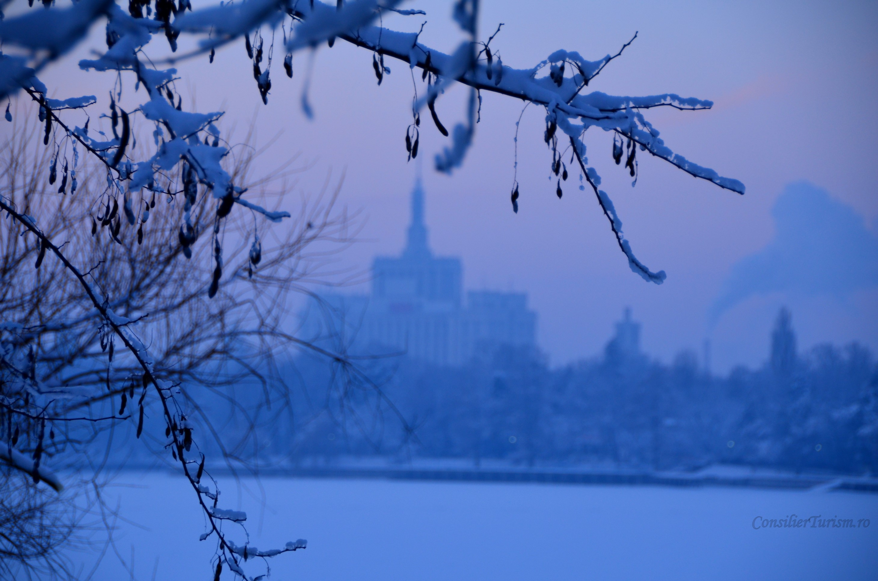 casa presei winter