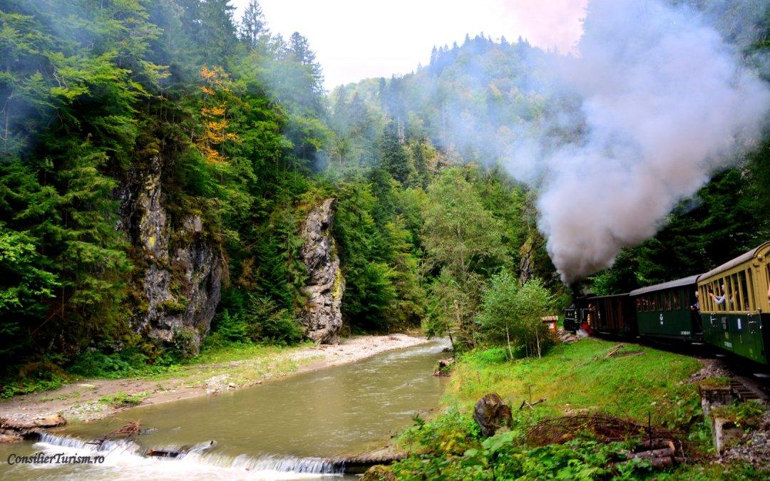O călătorie vintage cu mocănița pe Valea Vaserului. Fotografii și sfaturi utile