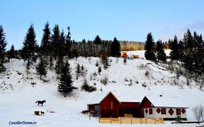 Poveste de iarnă în Bucovina
