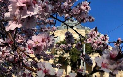 Destinații din România mai frumoase și interesante primăvara